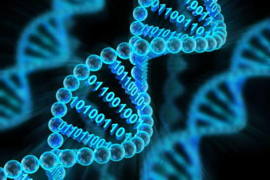 Krebsforschung: Biomathematiker vom RheinAhrCampus Mitglied einer DFG Forschungsgruppe